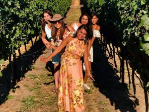 Boat Tour with a Vineyard Twist - sip happens wine tours